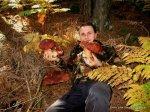 Boletus pinicolas