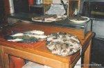 1985 Mañana de pesca submarina
