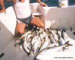 1999 Pesca en Cullera