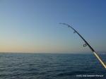 2009 Pesca de dorado al parado (3)