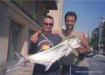 28-6-2003 Palometon