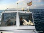 Un dia de pesca (8)